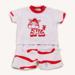 Adorable Boys Day Wear Zebra Set